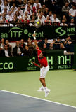 Novak Djokovic-2 Royalty Free Stock Image