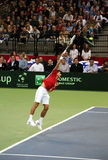 Novak Djokovic-3 Royalty Free Stock Image