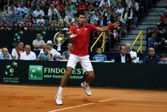 Novak Djokovic-11 Royalty Free Stock Photography