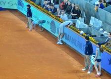 Novak Djokovic injuried Royalty Free Stock Image