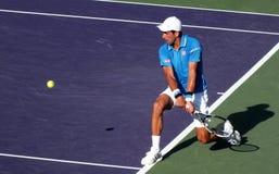 Novak Djokovic op tennisbaan royalty-vrije stock foto