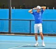 Novak Djokovic practicing Royalty Free Stock Photography