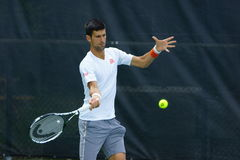 Novak Djokovic (SRB) Fotografia de Stock Royalty Free