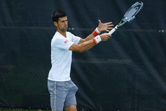 Novak Djokovic (SRB) Stock Image
