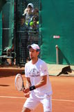 Novak Nole Djokovic alla rete Fotografia Stock Libera da Diritti