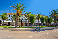 Novalja on Pag island palm waterfront view Stock Images