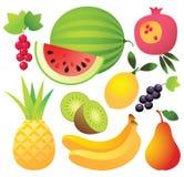 Nove ícones da fruta Fotografia de Stock Royalty Free