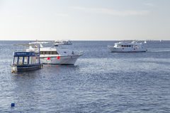 Nove barcos do mergulho estão vindo aos mergulhadores recreacionais Fotos de Stock