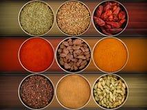 Nove especiarias diferentes Imagem de Stock
