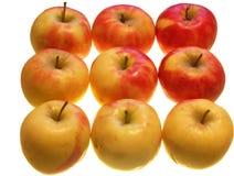 Nove maçãs Fotografia de Stock Royalty Free