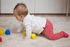 Nove mesi della neonata che gioca con i suoi giocattoli Fotografie Stock