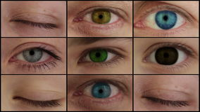 Nove olhos coloridos diferentes. Montagem de HD