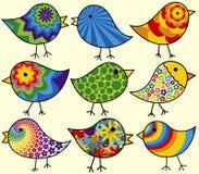 Nove pássaros coloridos Fotos de Stock Royalty Free