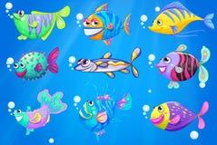 Nove pesci variopinti sotto il mare royalty illustrazione gratis