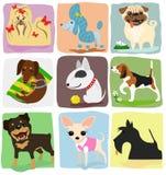 Nove razze del cane Fotografia Stock Libera da Diritti