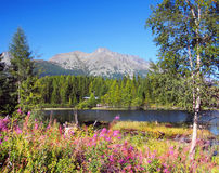 Nove Strbske Pleso and High Tatras Peaks Stock Photo