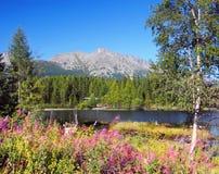 Nove Strbske Pleso and High Tatras Peaks stock photo