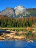 Nove Strbske Pleso, kick Tatras i höst royaltyfria foton