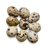 Nove uova di quaglia su un fondo isolato bianco Primo piano Vista superiore fotografie stock libere da diritti