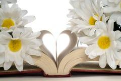 Novela romance Fotografia de Stock Royalty Free