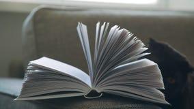 Novela, una edición del libro, libro en una cubierta Libro de la cabecera Libro inacabado almacen de metraje de vídeo