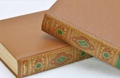 Novelas do no. 7 e do no. 13 Imagem de Stock