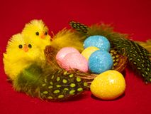 Novelty Easter Toy Chicks and nest. Two novelty Toy easter chicks with eggs in the nest with feathers and pink, blue and yellow eggs Royalty Free Stock Photography