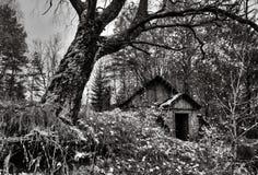 November auf Bauernhof Garavishki. Stockfotografie