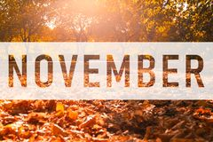 November greeting text on colorful fall leaves royalty free illustration