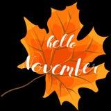 November hello, hand het van letters voorzien, citaten Moderne motivatie Royalty-vrije Stock Fotografie