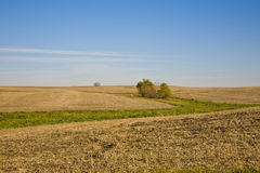 November Illinois Fields royalty free stock image