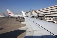 5 November 2015 - Japan Airlines (JAL) flygplan i Tokyo internerar Arkivbild