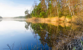 November lake mirror Stock Photography