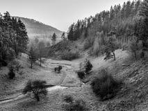 November Landscape from Franconia Stock Photo