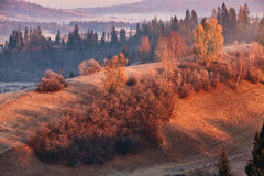 November morning in carpathian Royalty Free Stock Image
