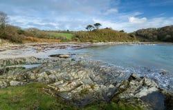 November-Ochtend, Polridmouth-Inham, Gribbin-Hoofd, Cornwall stock fotografie