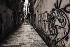 November in Palermo, Sicily Royalty Free Stock Images