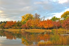 November Pond in the Heart of the Park. Trees in a city park line the edge of the pond and highlight the intense effect of sunlight on a cloudy November day. The stock image