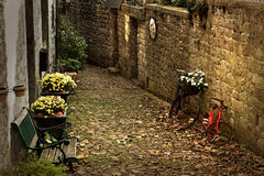 November road. Little alley in autumn, with november flowers stock photos