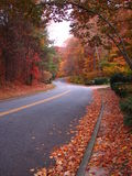 November Road Royalty Free Stock Photography