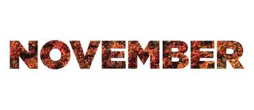 November. Sign november made of red ivy leaves stock images