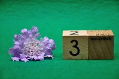 3 November on wooden blocks with a purple flower. On a green background royalty free stock photos