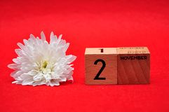 2 November on wooden blocks with a white daisy. On a red background royalty free stock images