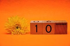10 November on wooden blocks with a yellow daisy. On an orange background royalty free stock photo