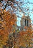 Novembre à Paris, Notre Dame photographie stock libre de droits