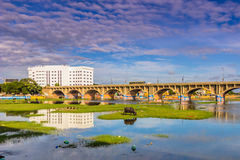 13 novembre 2014 : Taureau dans le paysage autour de Madurai, Inde Image stock