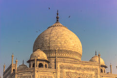2 novembre 2014 : Toit de Taj Mahal à Âgrâ, Inde Image stock