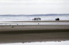 Noventa playas de la milla - Nueva Zelanda foto de archivo