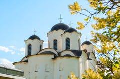 novgorod veliky的俄国 圣尼古拉斯在Yaroslav庭院, Veliky诺夫哥罗德,俄罗斯的大教堂圆顶特写镜头视图  免版税库存照片