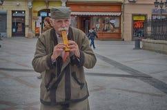 Novi Sad, playing the fife. Old man playing the fife in Dunavska street in Novi Sad Stock Photography